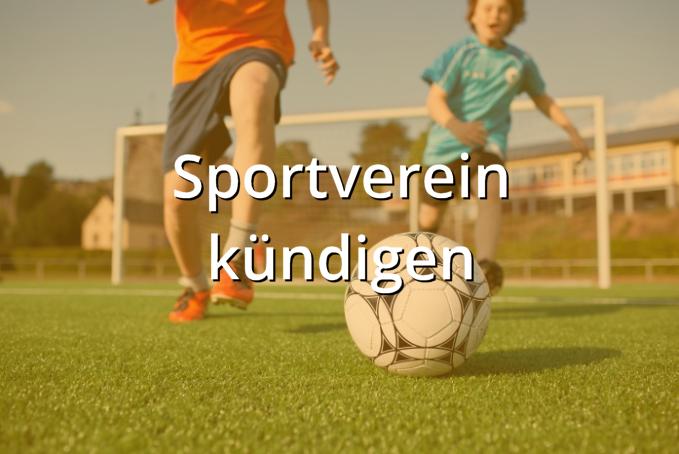Sportverein kündigen Muster